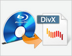 Blu-ray to DivX Ripper Review
